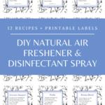 diy natural air freshener recipes