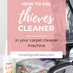 thieves in carpet cleaner